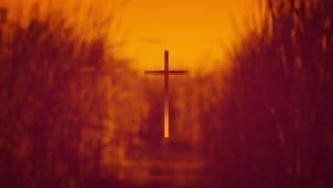 Lenten Daily Devotionals 2019